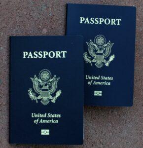 Göy pasport